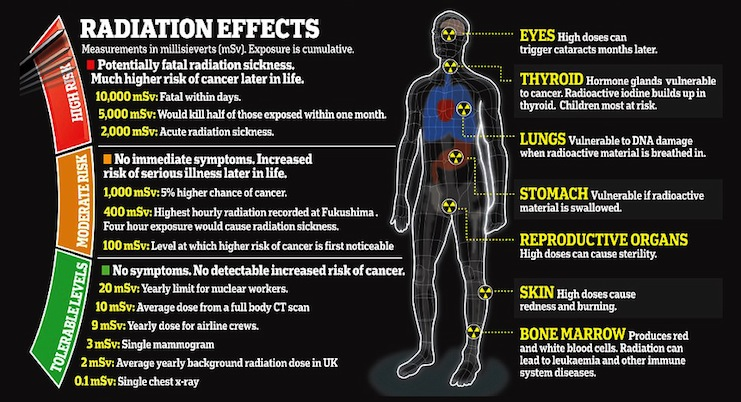 Radiation Effects.